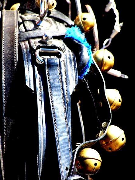 Saddle Bells