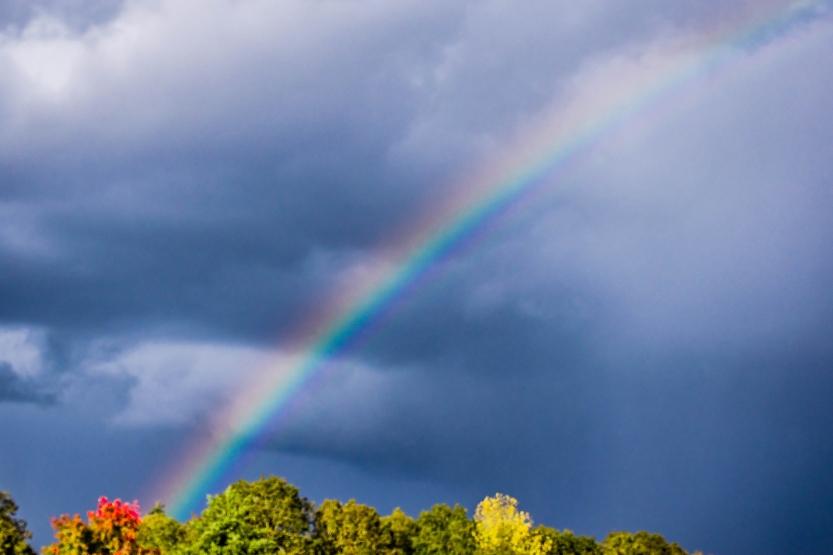rainbow_sm-2616