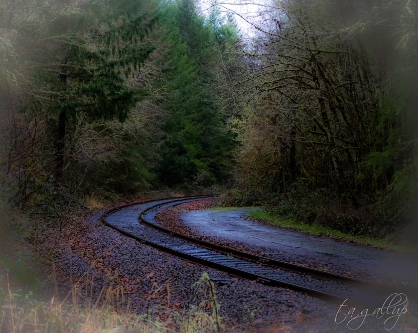 traintracks_sm-4306