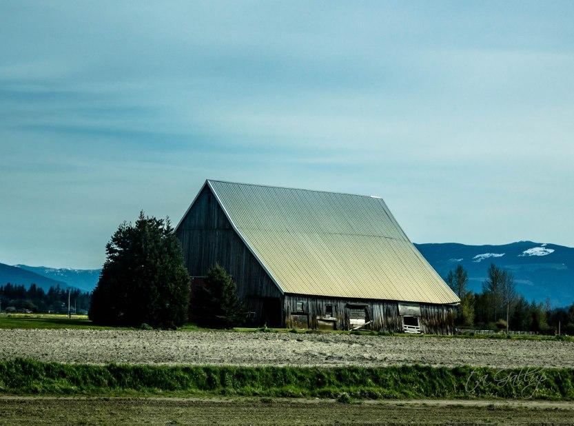 Cascades_barn-4939