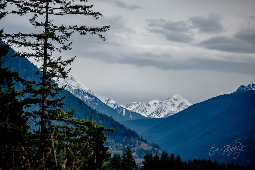 olympicmountains-5512